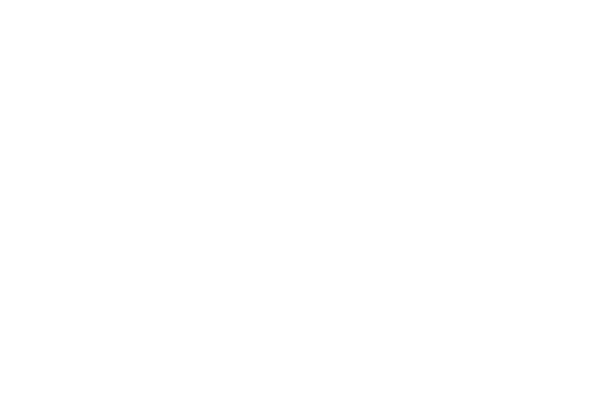 Choperas para Fiestas | Chopera de 30 Litros | Beer Kings by Salsarte